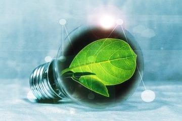 green industries
